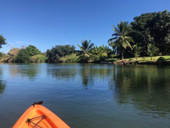 Oahu Paddle Board Tours