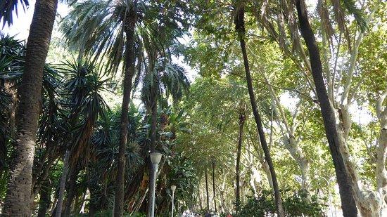 Parque de Málaga: Parque de Malaga