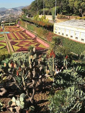 Botanischer Garten Picture Of Madeira Botanical Garden Funchal