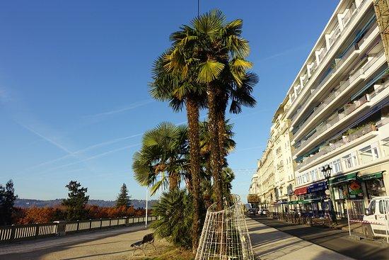 Boulevard des Pyrenees Photo