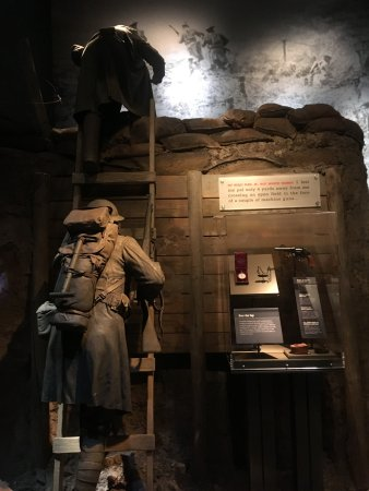 """National Infantry Museum and Soldier Center : A simulated WWI trench in the """"International Stage"""" exhibit."""
