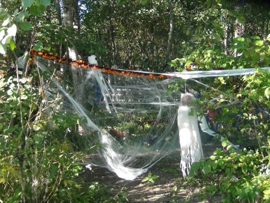 Covert, MI: The cabin guests go all out decorating their area