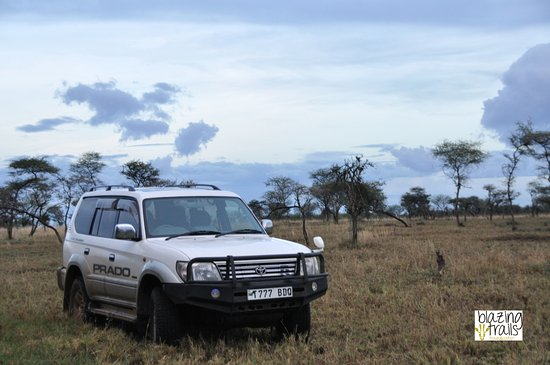 Arusha Car Rental & Safaris
