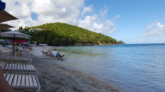 Coki Point Beach: Coki beach