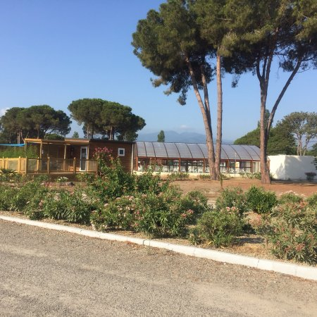 Camping Tohapi Domaine d'Anghione : photo0.jpg