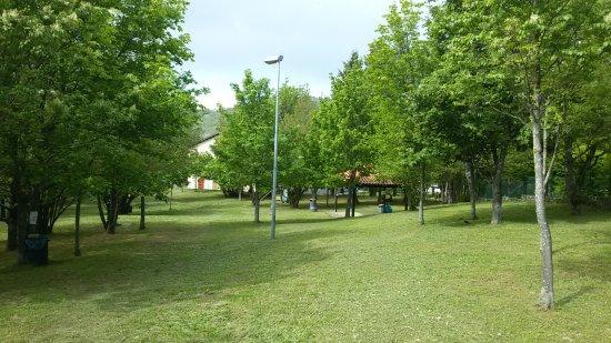Area Sgambamento Cani Lucia Vaioli