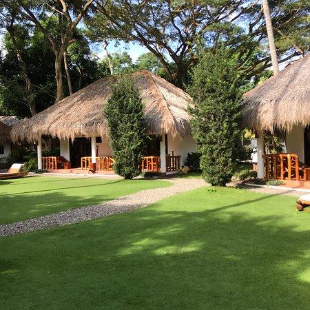 Pura Vida Beach Dive Resort Restaurant And Bar Photo5 Jpg