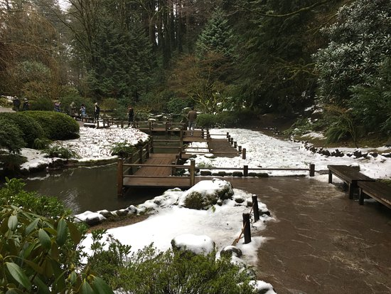 Good Japanese Restaurants In Portland Oregon