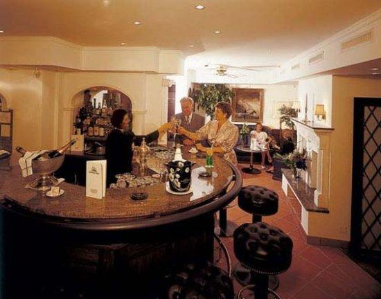 Baslertor Summer Pool Hotel : Bar/Lounge