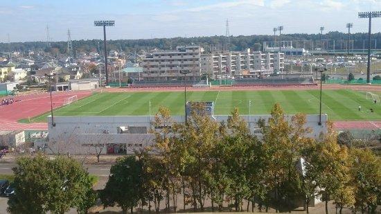 Tatsunoko Field