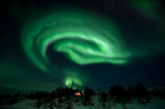 Northern Lights Husky Visit