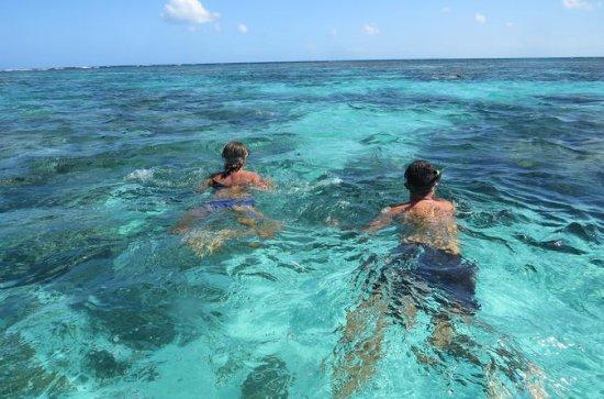 Snorkling i lagunen och runt Islets i ...