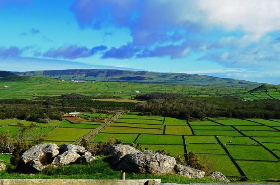 Full-day tour in Terceira Island
