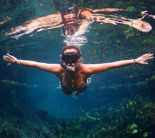 Katherine, Australia: Bitter Springs snorkel