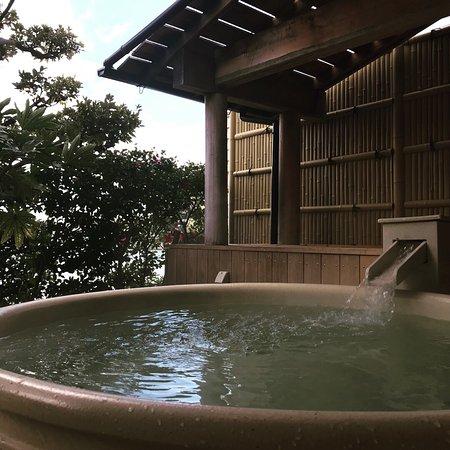 Hamanako Kanzanji Onsen Sansuikan Kinryu: photo1.jpg