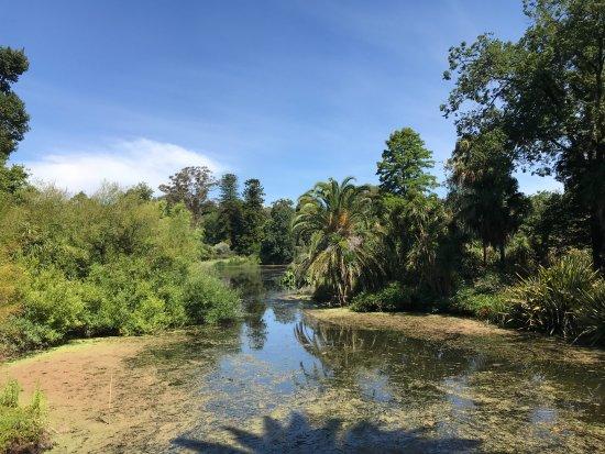 Pond obr zek za zen royal botanic gardens victoria for Garden pond melbourne