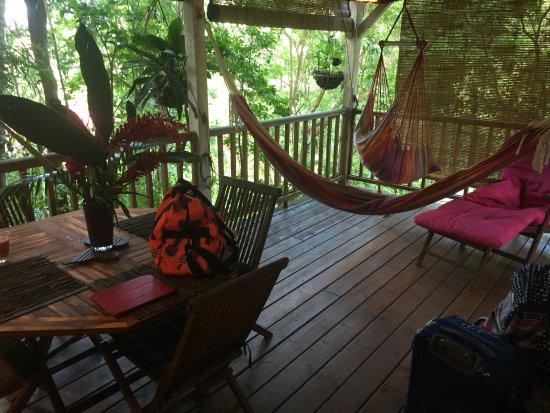 Terrasse au jardin des colibris deshaies f nyk pe for Au jardin des colibris