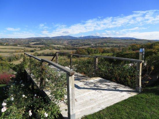 Roccafiore Spa & Resort: Countryside view