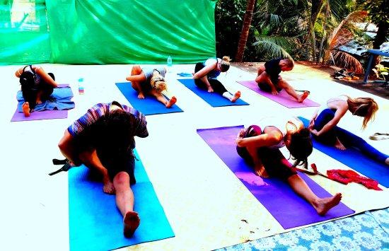 Aranya Yoga