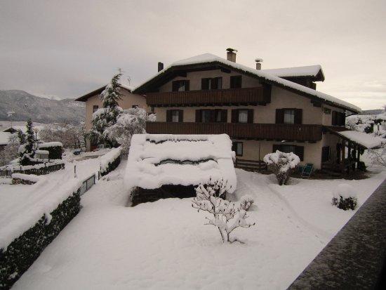 Pineta Naturamente Hotels : Vista dalla camera (rivolta a nord)