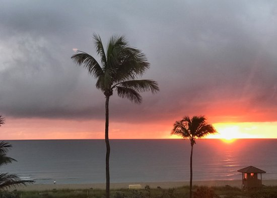Delray Beach Marriott: Sunrise view from our oceanfront room.