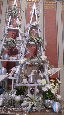 Chedigny, France: Chenonceau pendant les fêtes de fin d'année
