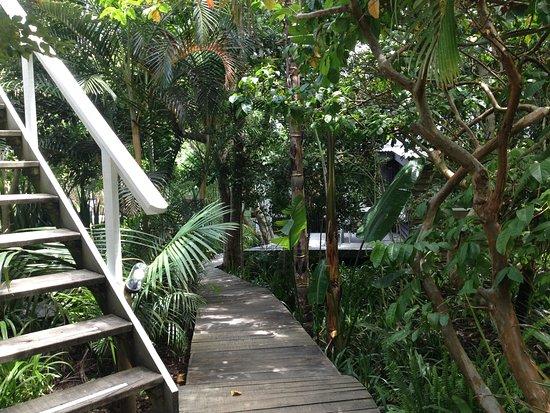 Bamboo the Guesthouse: Le magnifique jardin