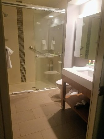 Adjustable shower head was awesome! - Picture of Hyatt Place Bowling ...