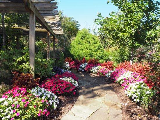 Shade Garden Picture Of Botanical Garden Of The Ozarks Fayetteville Tripadvisor
