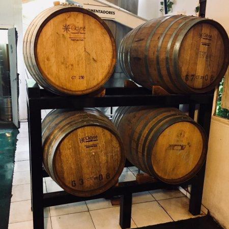 Fábrica de cerveza artesanal Gilbert