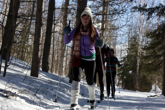 Tofte, Μινεσότα: Guided XC Skiing on area trails offered from Surfside on Lake Superior
