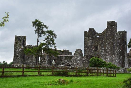 Navan, Ireland: Bective Abbey