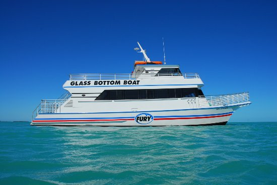More info about glass bottom boat tours, underwater pictures on.