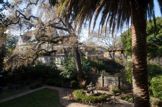 Beazley House: Back yard view of garden