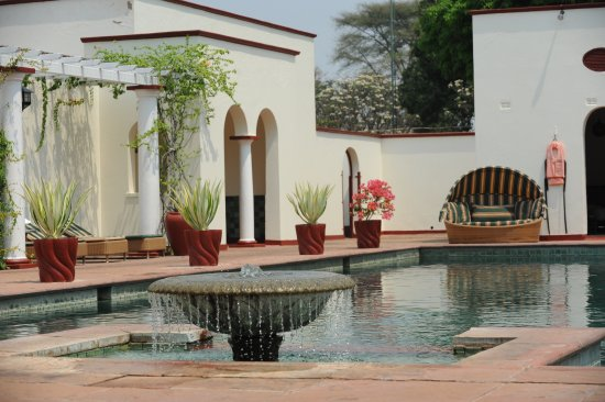 The Victoria Falls Hotel : AWESOME POOL!!