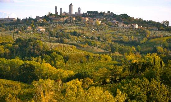 Il Borghetto di San Gimignano Agriturismo : nearby San Gimignano