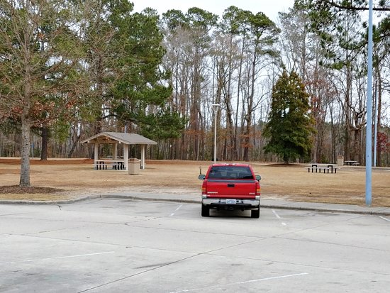 Rowland, NC: These are a few picnic areas, one covered and one not.