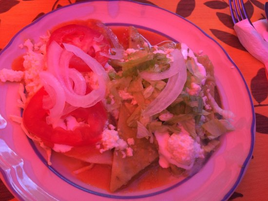 Patio Mexica Cooking School : Enchilada on the left. Chilaquile on the right. VERY good.
