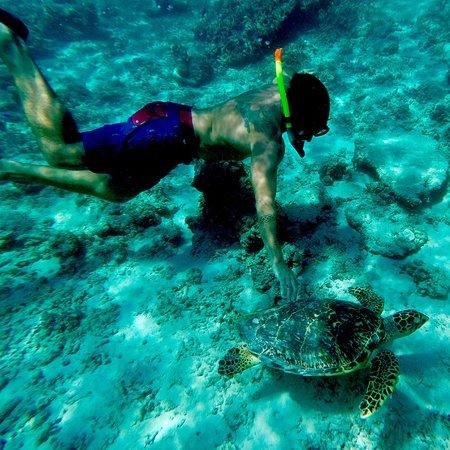 Gili Islands, Indonesia: photo9.jpg