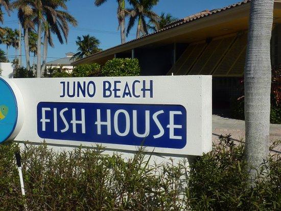 Juno beach fish house foto juno beach fish house juno for Juno beach fish house