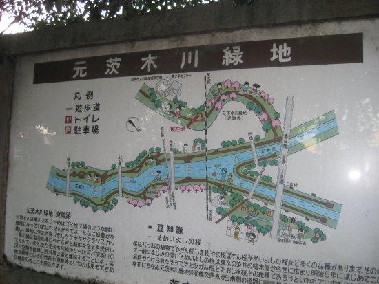 Motoibarakigawa Ryokuchi Park Photo
