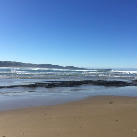 Kaka Point, Nuova Zelanda: photo2.jpg