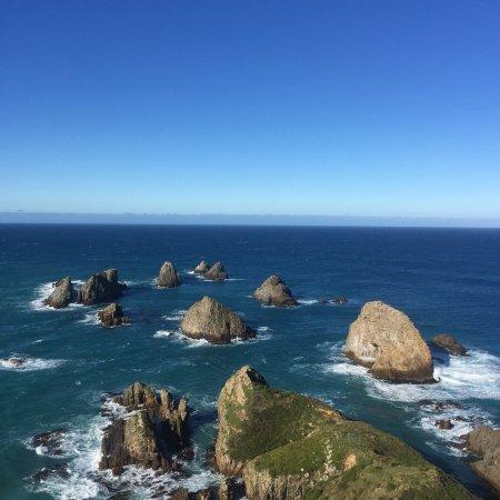 Kaka Point, Nuova Zelanda: photo4.jpg