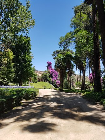 Alto Jahuel, Chile: Road leading up to hotel from garden