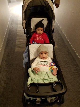 The Lodge and Spa at Callaway Resort & Gardens: Taking our twin boys out in their stroller!