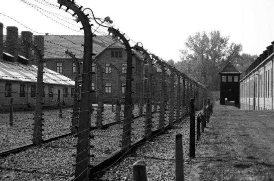 Auschwitz-Birkenau Guided Tour with...