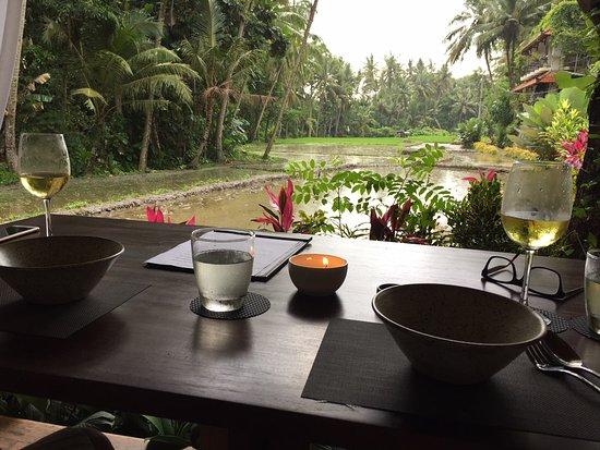 Image result for sacred rice ubud