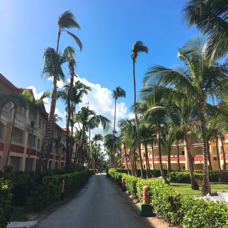 Majestic Colonial Punta Cana: photo1.jpg