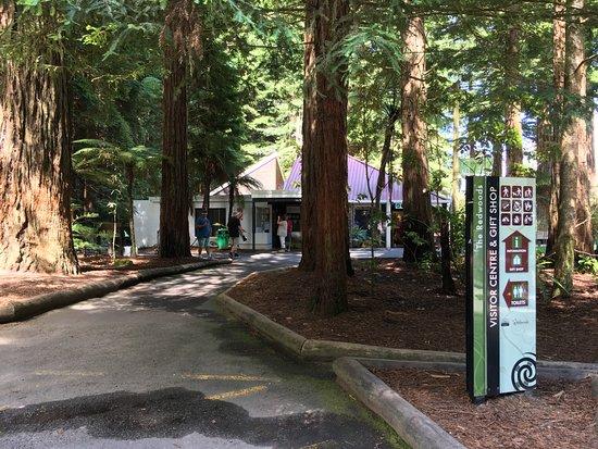 Redwoods i-SITE Visitor Information Centre