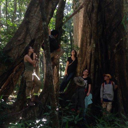 Mondulkiri Province, كامبوديا: Mondulkiri Trail  @ MonyHong  Page www.mondulkiritourguide.com